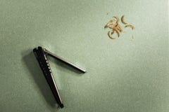 Spika nagelsax, och Nails klipps Arkivfoto