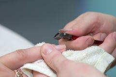 Spika polermedel på spikar i en skönhetsalong Royaltyfri Foto