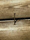 spika tappningväggen arkivbilder