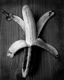 spikad banan Arkivfoton