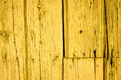 Spikad guling Arkivfoto