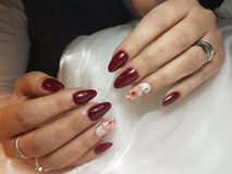 Spikar förlängningar som akryl spikar rött spikar oval Royaltyfri Foto