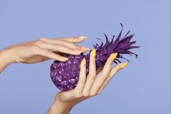 Spikar manikyr Handen med stilfullt spikar hållande purpurfärgad ananas arkivbild