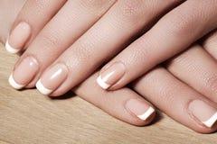 Spikar med perfekt fransk manikyr Omsorg för kvinnliga händer Royaltyfri Fotografi
