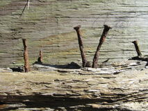 spikar rostigt trä Arkivbilder