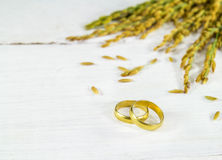 Spike and gold Ring on a white wooden Stock Photography