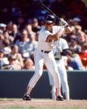 Spike Owen Boston Red Sox arkivbilder