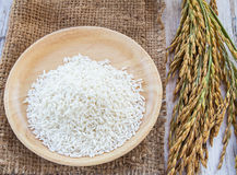 Spike and rice seed in wooden plate on a wooden table Stock Photos