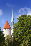 Spike of St Olaf (Oleviste) Church and fortification tower. Tallinn, Estonia Stock Images