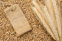 Spike of wheat and tag price Stock Photo