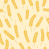 Spikelet pattern Stock Photo
