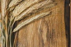 Spikelets do trigo ou do centeio no fim de madeira do fundo acima imagem de stock