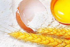 Spikelets of wheat with egg on flour spillage.. Stock Images