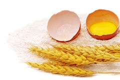 Spikelets of wheat with egg on flour spillage.Isolated. Royalty Free Stock Photos