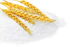 Spikelets of wheat on flour spillage.Isolated. Stock Images