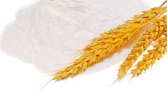 Spikelets of wheat on flour spillage.Isolated. Stock Photography