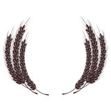 Spikelets of wheat. Wheat spike in the form of a coat of arms.  on white background Royalty Free Stock Images