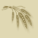 Spikelets of wheat tied a ribbon on a beige background. Spikelets of wheat tied with a ribbon on a beige background Royalty Free Stock Photos