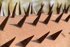 Spikes texture, spike metal rusty aged surface.  royalty free stock image