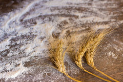Spikes of wheat and flour Royalty Free Stock Image