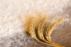 Spikes of wheat and flour Royalty Free Stock Photography
