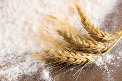 Spikes of wheat and flour Royalty Free Stock Images