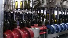 Spill of alcohol wine in glass bottles at the plant. Conveyor belt with glass bottles. The production process of stock video