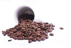 Spilled beans Royalty Free Stock Photos