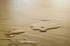 Spilled beer on floor. Details of spilled cold beer on wooden floor Stock Photos