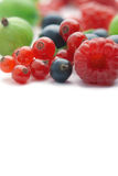 Spilled  berries Royalty Free Stock Photo