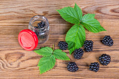 Spilled blackberries on a garden table. Black forest fruits with green blackberry leaves and jar on the brown wooden background royalty free stock image