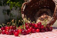 Spilled Cherries. A few spilled cherries on garden table Stock Image