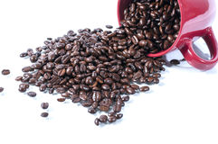 Spilled coffee beans. Coffee benas spilled ovre white surface stock image