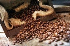 Free Spilled Coffee Beans Stock Images - 38800344