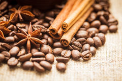 Spicy coffee beans Royalty Free Stock Photography