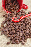Spilled coffee beans, red cup Royalty Free Stock Image