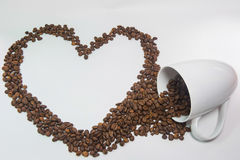 Spilled coffee beans. From the white ceramic cup a beautiful pattern on white background royalty free stock photography