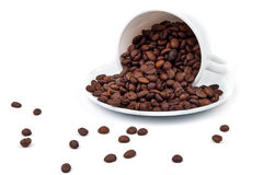Spilled cup of coffee beans Royalty Free Stock Images