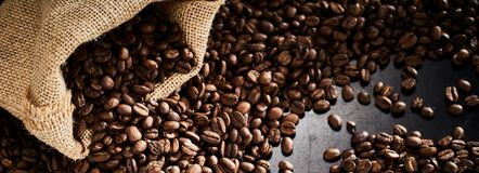 Spilled full roast coffee beans with hessian bag. On a dark slate background in panorama banner format stock photos