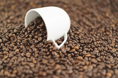 Spilled out of cup coffee beans. Spilled out of cup roasted coffee beans as a background composition Royalty Free Stock Photography