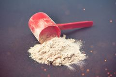 Spilled scoop of protein powder Royalty Free Stock Images