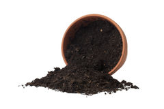 Spilled soil in the flower pot Royalty Free Stock Photo