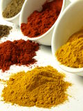 Spilled spices Stock Photos