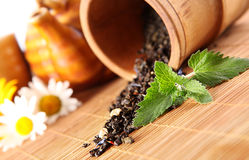 Spilled tea and a sprig of fresh mint Royalty Free Stock Images