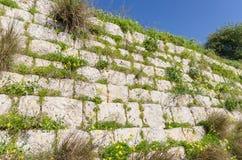 Spillrorvägg i Chadwick Lakes - Malta royaltyfri fotografi