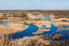 Spills Of River In Spring Season. Sunny Spring Day. Beautiful La Stock Photography