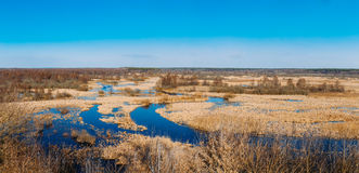 Spills Of River In Spring Season. Sunny Spring Day. Beautiful Landscape Stock Photos