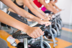 Spin class working out in a row Stock Image