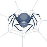 Spin in een Web Stock Foto's