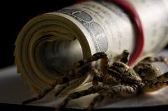 Spin en dollars - het concept van de geldbescherming Royalty-vrije Stock Foto's